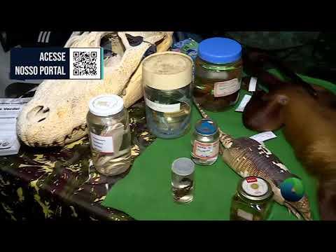 BOLETIM 2.1 - EXPO BIONEGÓCIOS COMEÇOU HOJE - 01.06.21