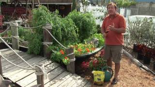 Maintaining a Garden : Vegetable Gardening for Beginners