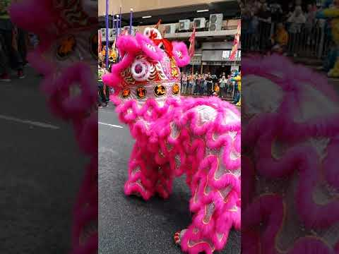 Lion and Dragon dance