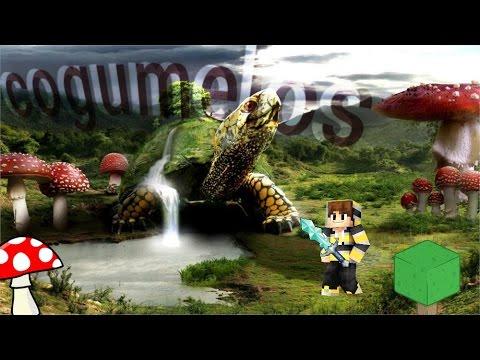 Vila com cogumelos - semente - Minecraft PE
