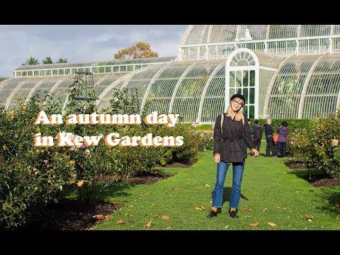 London guide: Kew Gardens (best botanical garden ever) 🌿🐝