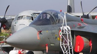 Aero India 2017 - what business visitors saw