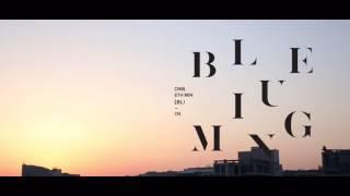 【Fan made】CNBLUE 🌼 Daisy 🌼Lyrics &日本語字幕  BLUEMING making