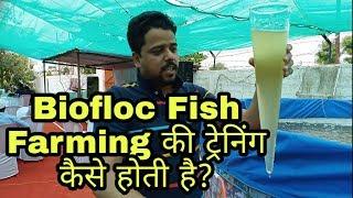 Biofloc setup in india