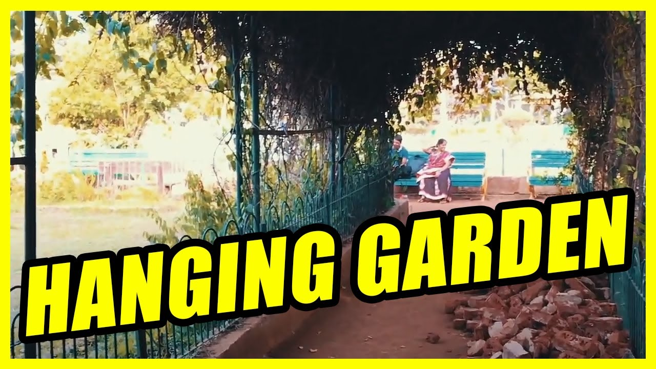 how to make a hanging garden