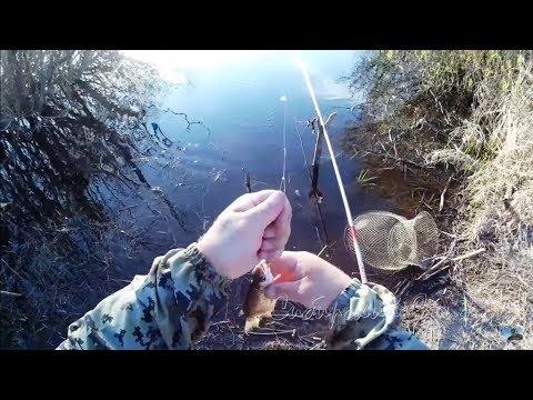 Рыбалка. Удочка поплавочка донка