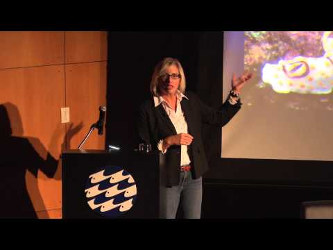 Ellen Prager - Sex, Drugs, and Sea Slime: The Ocean's Oddest Creatures