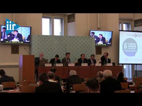 "6th International Symposium ""Czech Foreign Policy"" - Day I, Panel I"