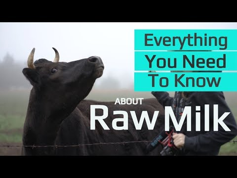 Benefits of Raw Milk  | Why Jersey Cows? | Raw Milk Processing | Where To Get  Unpasteurized Milk