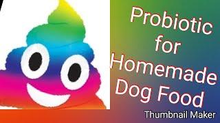 Dog Probiotics on Instant Pot Dog Food Reviewed By Boston Terrier ASMR