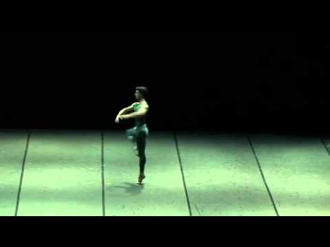 In the Middle Somewhat Elevated - Marta Romagna, Roberto Bolle, Zenaida Yanowsky