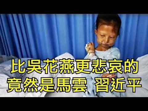 吳花燕走了郭美美還在中國慈善出了什麼狀況吳花燕事件的悲痛、悲憤和悲哀江峰漫谈20200118第98期