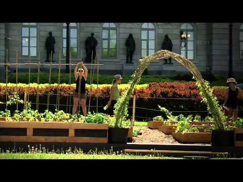 Trucs De Jardinage - Les Aménagements Comestibles