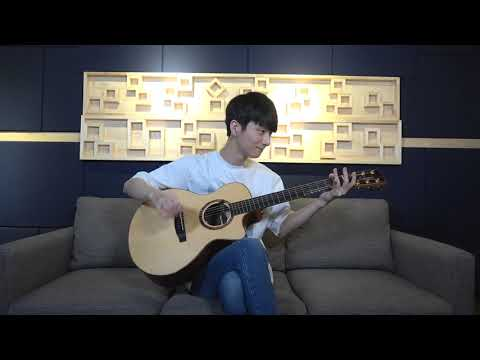 Ed Sheeran & Justin Bieber I Don&39;t Care - Sungha Jung