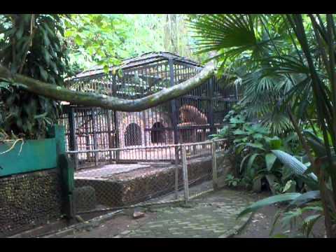 Funda Zoo San Jose Costa Rica