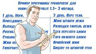 видео Программа тренировок для начинающих