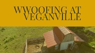 WWOOFING at VEGANVILLE!    Our Nomadic Lifestyle    The Conscious Continuum