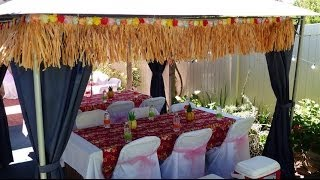 Lua Party Ideas - Come and see the entire display!