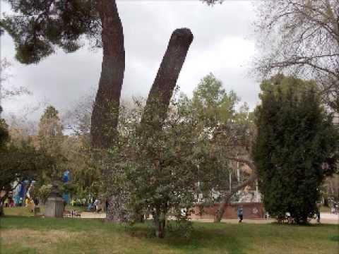 Ruta por el Parque de La Concordia de Guadalajara