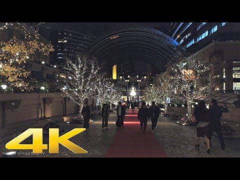 The Christmas lights in Ebisu, Tokyo - Long Take【東京・恵比寿イルミネーション】 4K