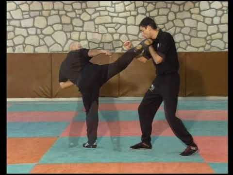 "The ""JEET KUNE DO "" = Encyclpedia -with Experts ""Bob Breen"" - ""Eric Laulagnet"""