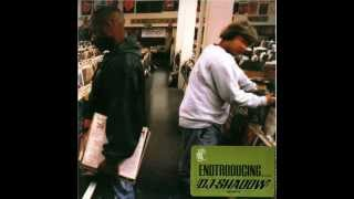 DJ Shadow - Endtroducing...... (Full Album)