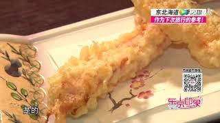 东京印象 北海道_东京印象 2017_腾讯视频