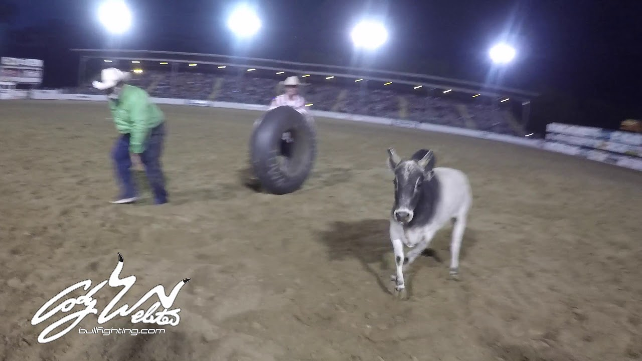 Rodeo Clown Jumps Bull Justin Rumford Youtube