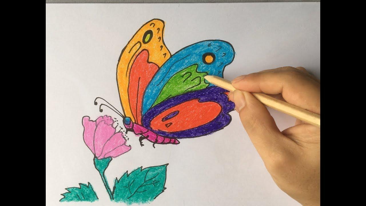 Vẽ con bướm, cho bé học vẽ/Draw butterflies, let your child learn to draw