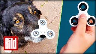 """""""Fidget Spinner"""" - Alle lieben das Spielzeug"""