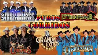 Grupo Exterminador, Los Orginales De San Juan, Los Dos Carnales,Terribles Del Norte | Puros Corridos