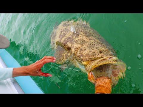 Human VS Giant Mystic Fish Caught Crazy!!