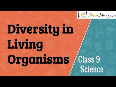 Class 9 Science Diversity in Living Organisms