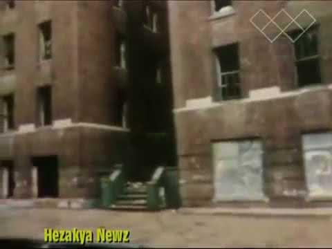 Why the Bronx burned (1977)