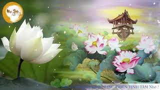 Nhạc Thiền Tĩnh Tâm   Hoa Sen Nước Chảy Tuyệt Hay Và Thư Giãn