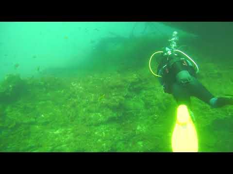 Diving Lanzarote - 37