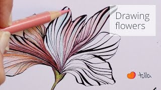 Drawing flowers: dip pen, ink, colored pencils (real time)