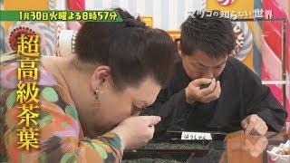 火曜よる8時57分 『マツコの知らない世界』 1月30日は「日本茶の世界」...