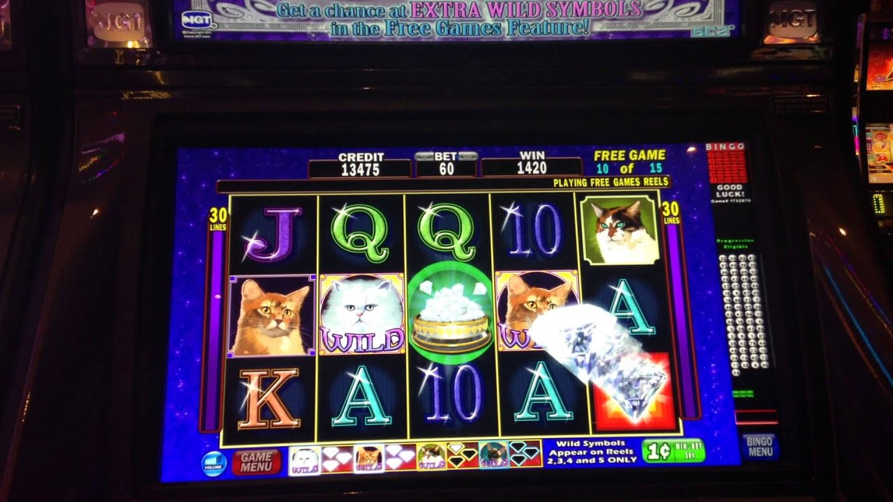 Free slot machines kitty glitter coast casino biloxi