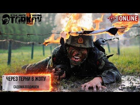 Стрим Escape From Tarkov  - Через терни в жо..... 18+