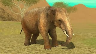 Wild Elephant Sim 3D Android Gameplay 9