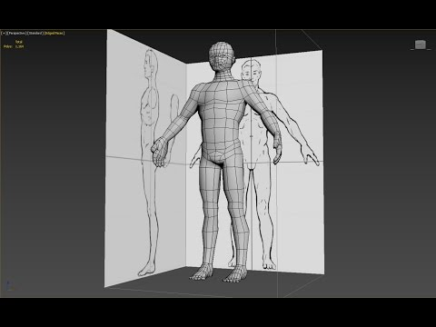 3DS Max Man character Body cylinder base