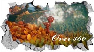 Over ³⁶⁰ : The flower lost 2017 Corto ⁴ᴷ Unravel
