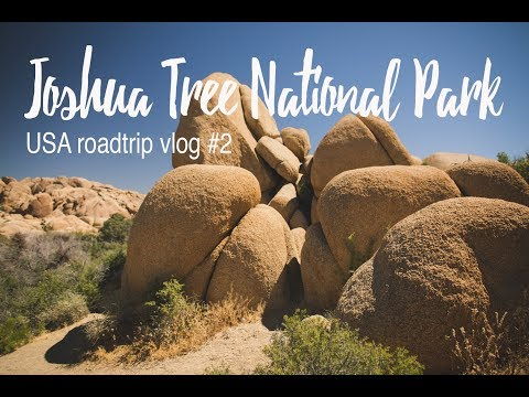Joshua Tree National Park - USA VLOG #2