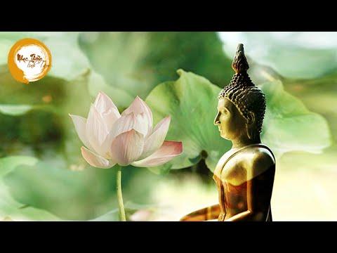 Nhạc Thiền Thư Giãn Giảm căng thẳng mệt mỏi stress Tập trung học tập Làm việc - RẤT HAY