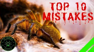 TOP 10 Mistakes Keeping Tarantulas - DON'T DO THIS!