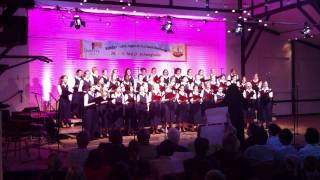 St. Theresien Chor Schönenberg Beim 5. Erwitter Kinder- Und Jugendchorwettbewerb, 28./29. Mai 2011