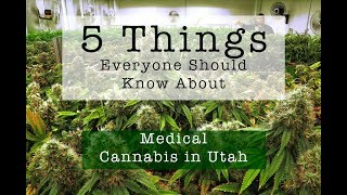 5 things Everyone Should Know About Proposition 2 in Utah