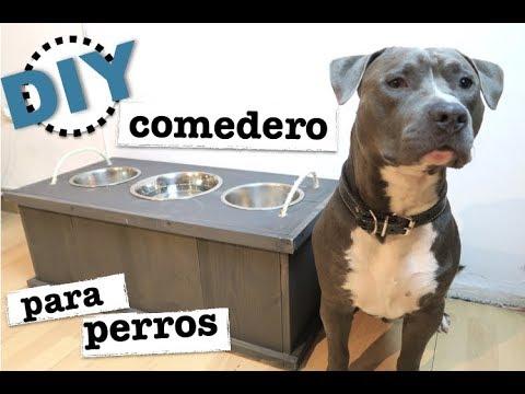 Como hacer un comedero para perros super facil youtube for Comederos para perros