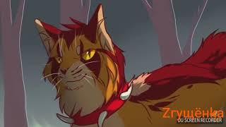 Коты - Воители битва Огнезвёзда и Бича